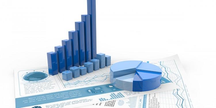 ბიზნესომბუდსმენის აპარატის 2021 წლის 6 თვის საქმიანობის სტატისტიკა